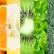 diete vegetali e diabete