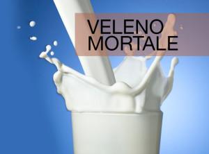 il latte vaccino fa morire